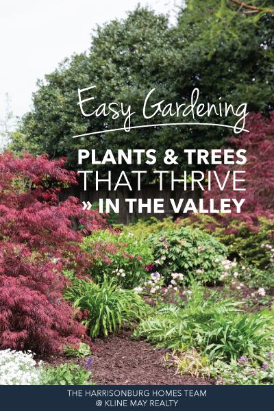 Easy Gardening