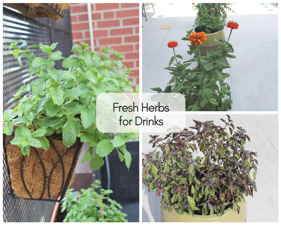 Herbs on the Rooftop | The Harrisonburg Homes Team
